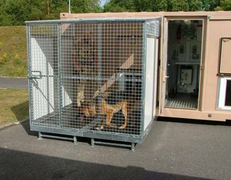 Military Working Dogs Container 02
